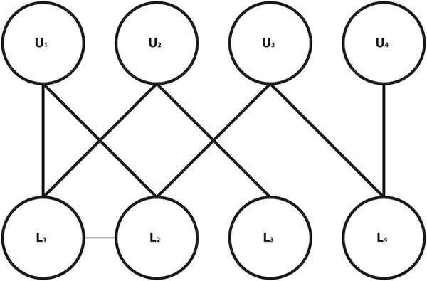 Figuur 2. 'n Tweeledige netwerk