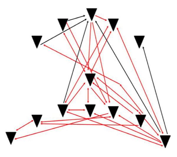 figuur-1b